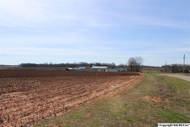 Lots and Land - NEW MARKET, AL (photo 4)