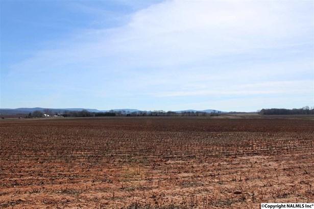 Lots and Land - NEW MARKET, AL (photo 5)