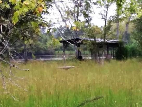 Lots and Land - Dayton, TN (photo 2)