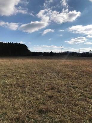 Lots and Land - Dayton, TN (photo 4)