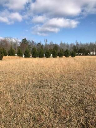 Lots and Land - Dayton, TN (photo 5)