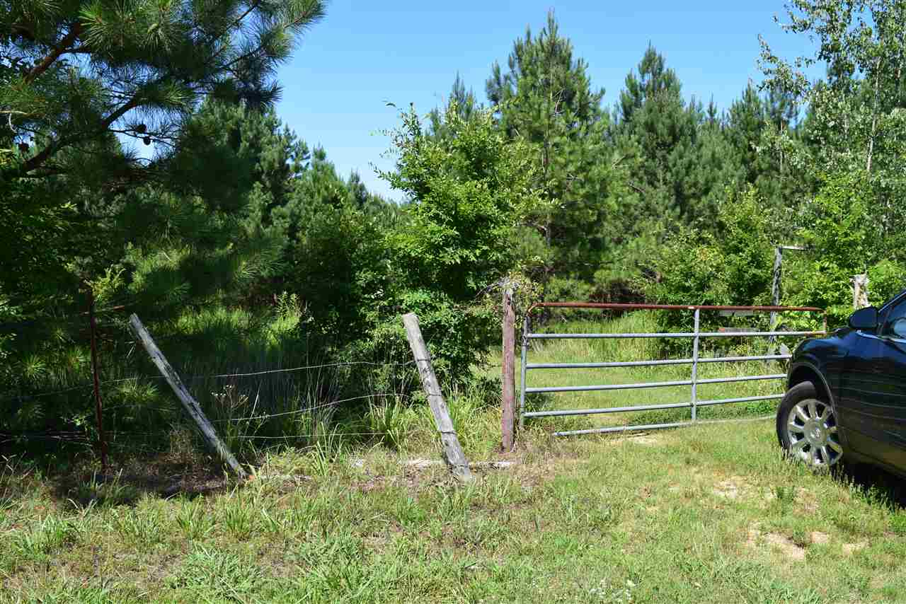 Lots and Land - Henderson, TN (photo 2)