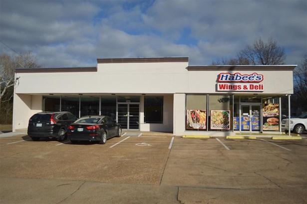 Rental - Memphis, TN (photo 4)