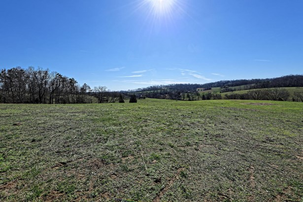 Lots and Land - Rutledge, TN (photo 4)