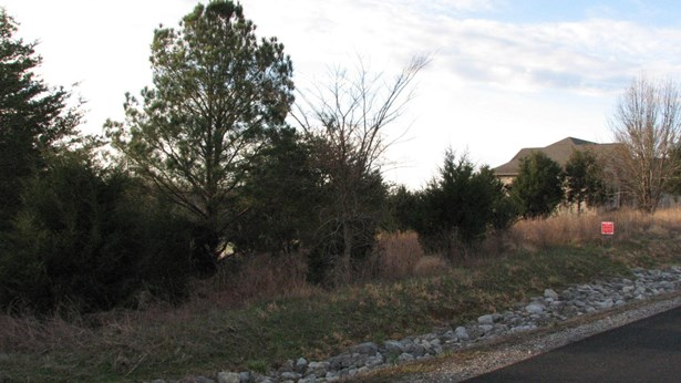 Lots and Land - Vonore, TN (photo 1)
