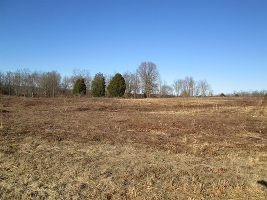 Lots and Land - Clarksville, TN (photo 3)
