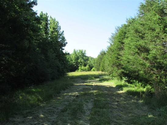 Residential/Single Family - Cedar Grove, TN (photo 3)