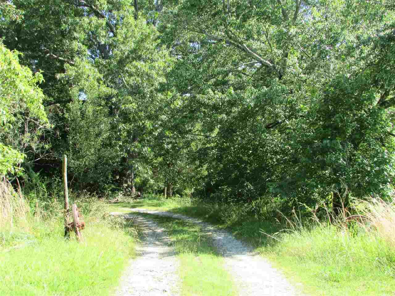 Residential/Single Family - Cedar Grove, TN (photo 5)