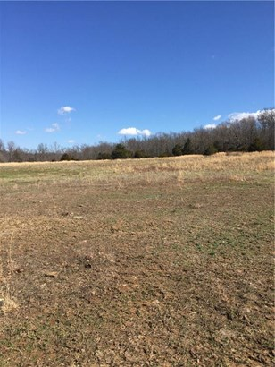 Lots and Land - Huntsville, AR (photo 3)