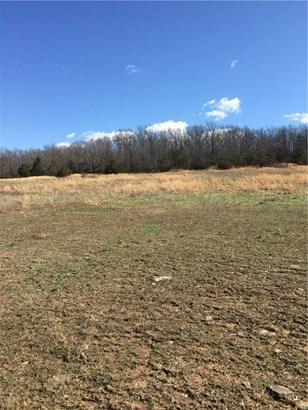 Lots and Land - Huntsville, AR (photo 4)