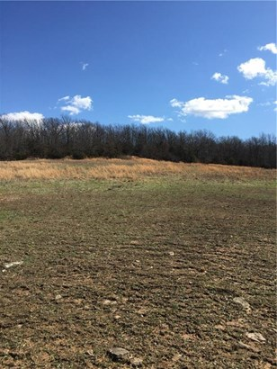 Lots and Land - Huntsville, AR (photo 5)