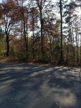 Lots and Land - Tunnel Hill, GA (photo 3)