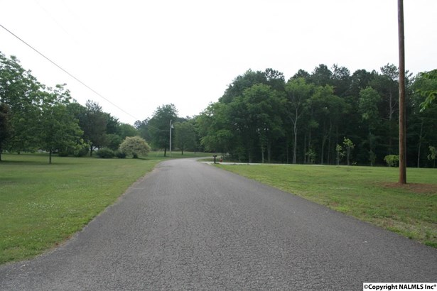 Lots and Land - ELKMONT, AL (photo 2)