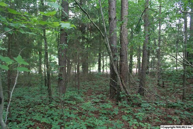 Lots and Land - ELKMONT, AL (photo 5)