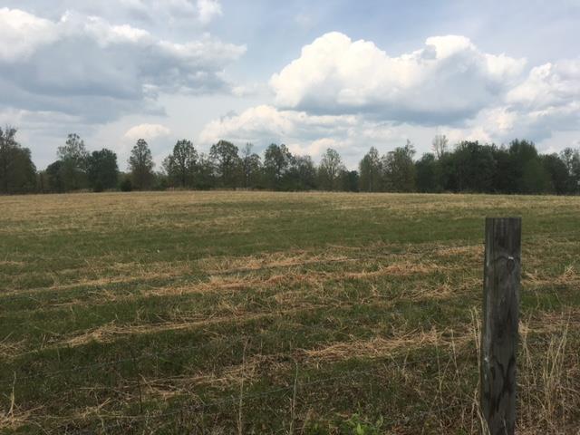 Lots and Land - Hohenwald, TN (photo 2)