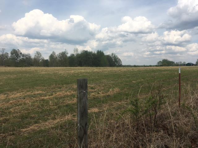Lots and Land - Hohenwald, TN (photo 3)
