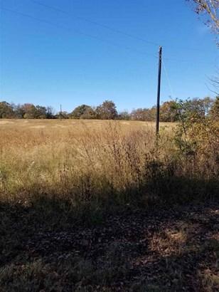 Lots and Land - Henning, TN (photo 1)