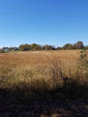 Lots and Land - Henning, TN (photo 3)