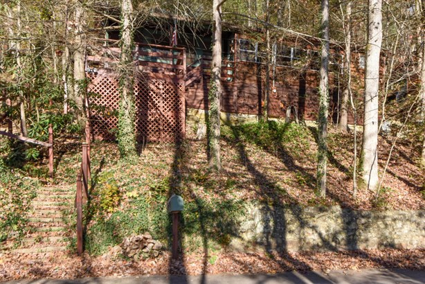 Residential/Single Family - Townsend, TN (photo 1)