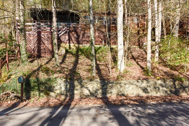Residential/Single Family - Townsend, TN (photo 4)
