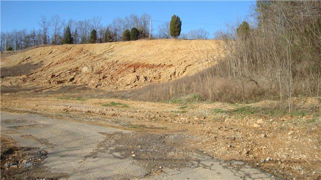 Lots and Land - Waverly, TN (photo 3)