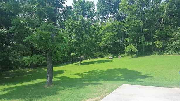 Residential/Single Family - Smyrna, TN (photo 2)