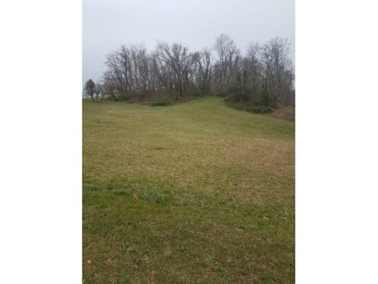 Lots and Land - Chuckey, TN (photo 1)