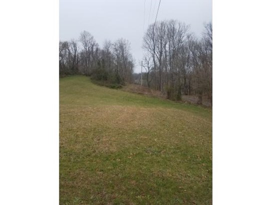 Lots and Land - Chuckey, TN (photo 2)