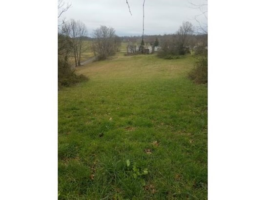 Lots and Land - Chuckey, TN (photo 5)