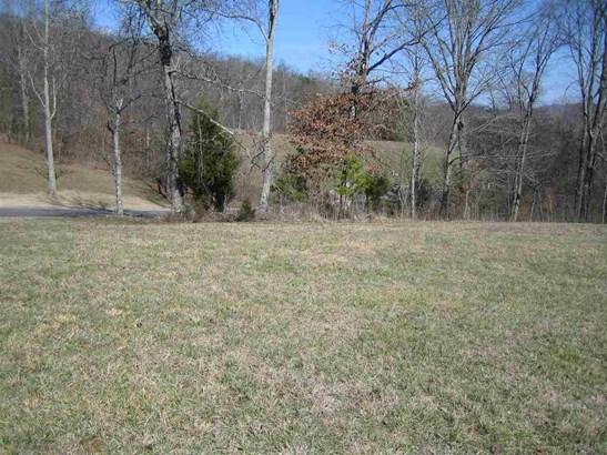 Lots and Land - Mooresburg, TN (photo 5)