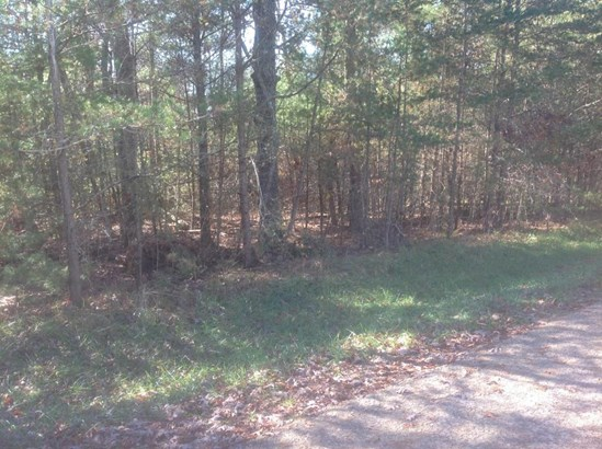 Lots and Land - Fairfield Glade, TN (photo 1)