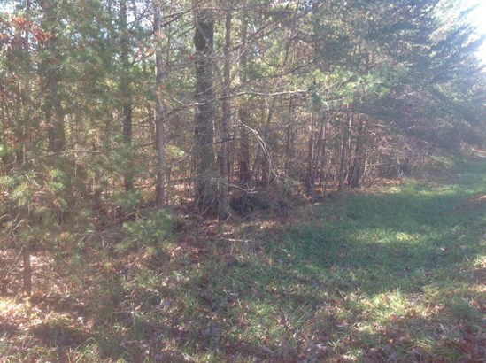 Lots and Land - Fairfield Glade, TN (photo 3)