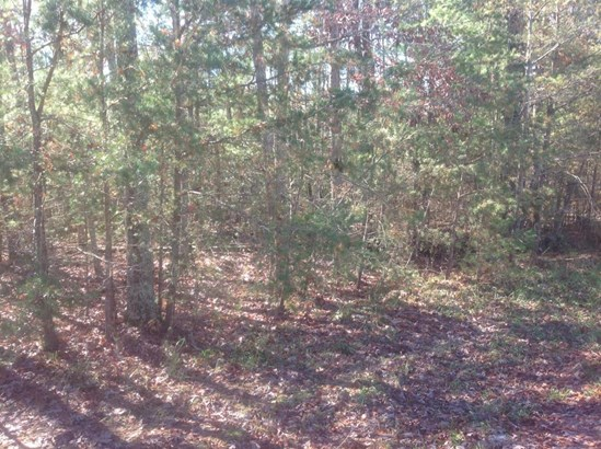 Lots and Land - Fairfield Glade, TN (photo 5)