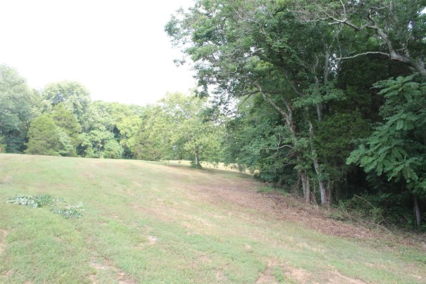 Lots and Land - Franklin, TN (photo 4)