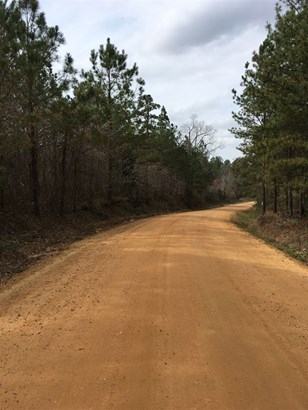 Lots and Land - Hickory Flat, MS (photo 2)