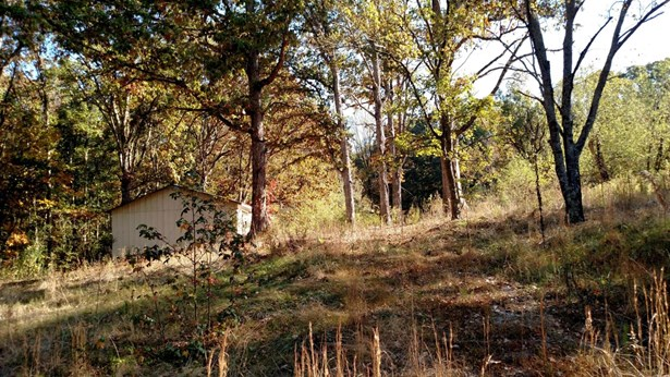Residential/Single Family - Tunnel Hill, GA (photo 2)