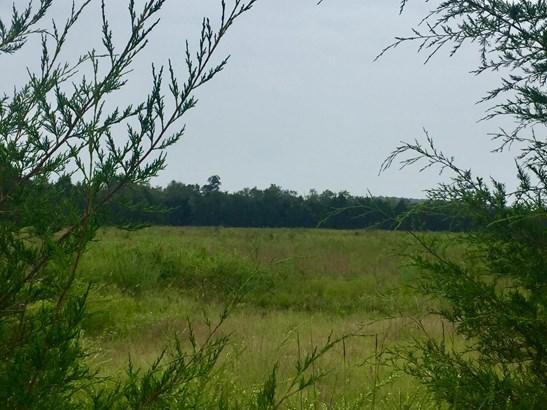 Lots and Land - Lascassas, TN (photo 2)