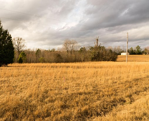 Lots and Land - Amory, MS (photo 3)