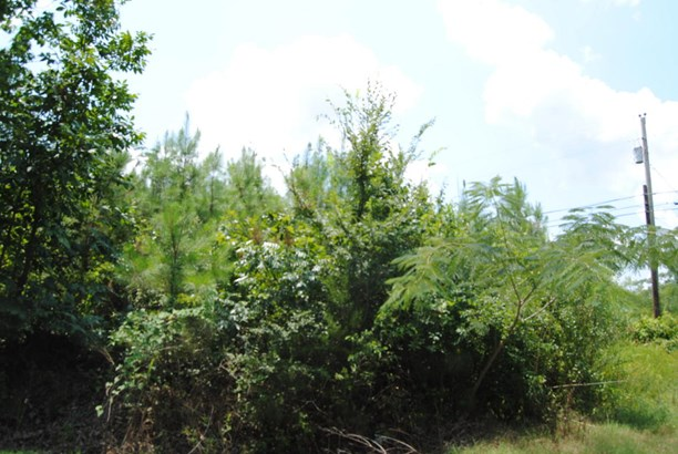 Lots and Land - Mooreville, MS (photo 4)