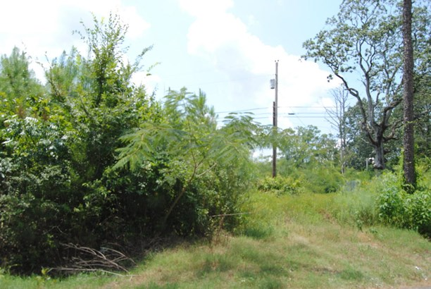 Lots and Land - Mooreville, MS (photo 5)