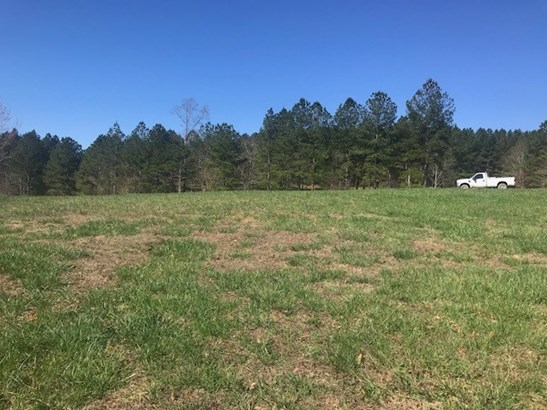 Lots and Land - Ocoee, TN (photo 5)