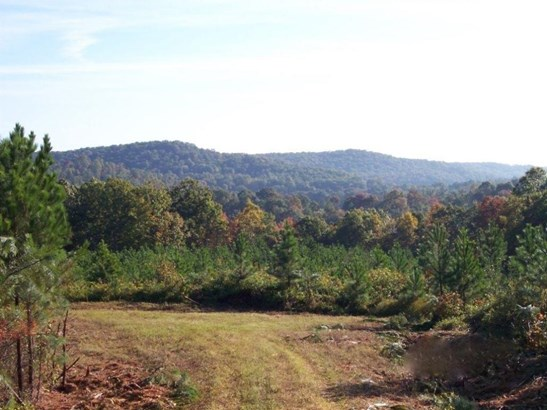 Lots and Land - Rockwood, TN (photo 1)