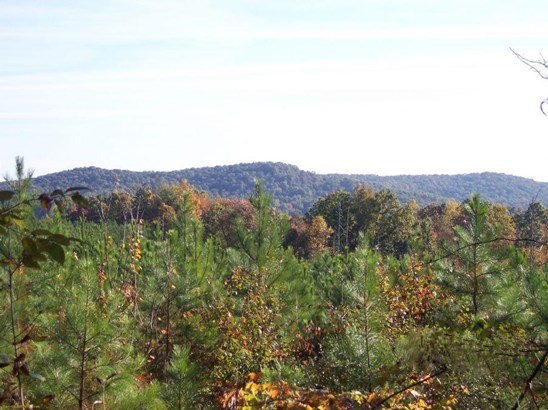 Lots and Land - Rockwood, TN (photo 3)
