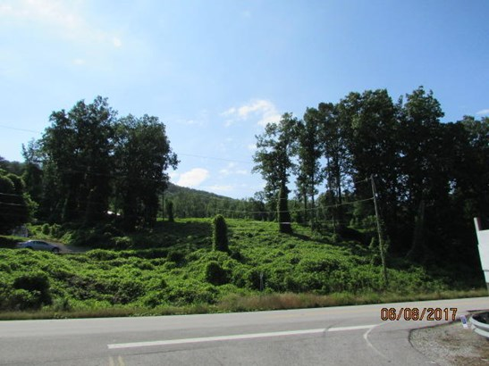 Lots and Land - Guild, TN (photo 1)