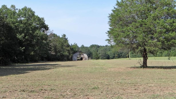 Lots and Land - Georgetown, TN (photo 1)
