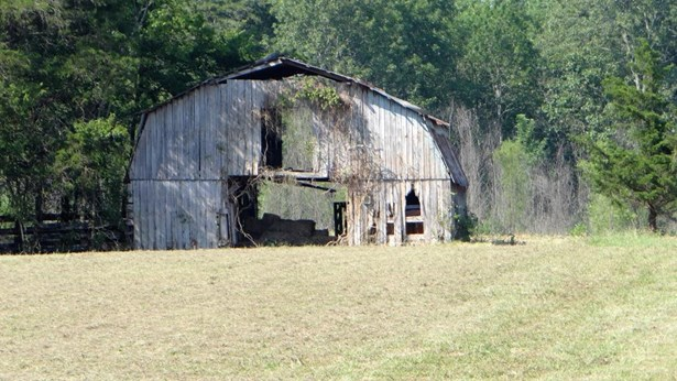 Lots and Land - Georgetown, TN (photo 3)