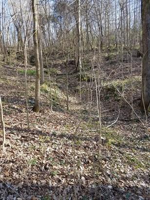 Lots and Land - Killen, AL (photo 4)