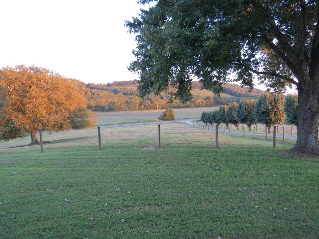Lots and Land - Pulaski, TN (photo 4)