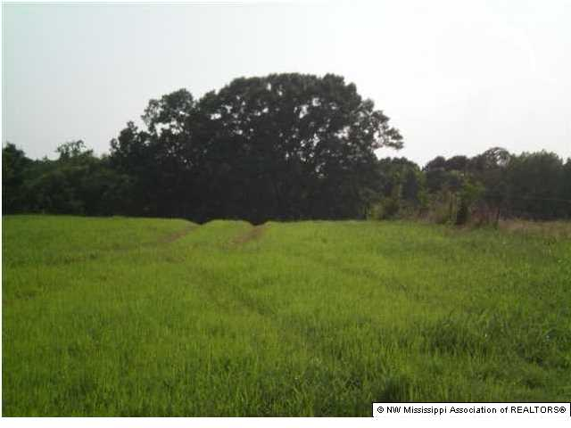 Lots and Land - Red Banks, MS (photo 5)