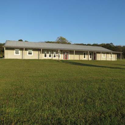 Residential/Single Family - Castalian Springs, TN (photo 1)